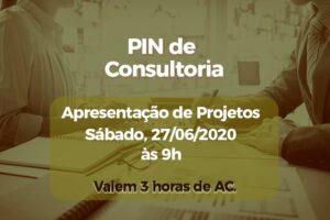 Apresentações do PIN de Consultoria